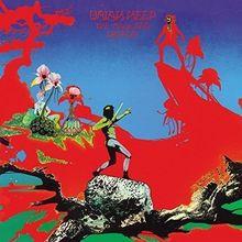 The Magician's Birthday (180g) [Vinyl LP]