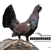 Auerhühner: Schön, scheu, schützenswert