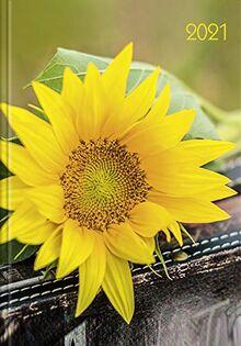 Lady-Timer Sonnenblume 2021: Buchkalender - Terminplaner. 1 Woche 4 Seiten. Format: 11 x 15,3 cm