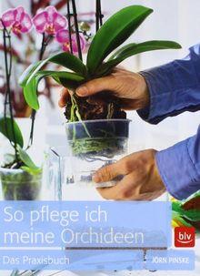 so pflege ich meine orchideen das praxisbuch von j rn pinske. Black Bedroom Furniture Sets. Home Design Ideas