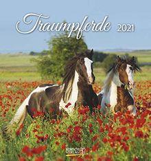 Traumpferde 2021: aufstellbarer Postkartenkalender