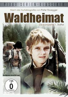 Pidax Serien-Klassiker: Waldheimat - Staffel I, Folgen 1-13 [2 DVDs]