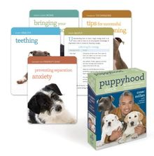 (Puppyhood Deck: 50 Tips for Raising the Perfect Dog) By Cesar Millan (Author) cards on ( Apr , 2010 )