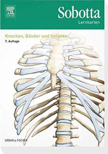 Sobotta Lernkarten Knochen, Bänder und Gelenke: Knochen, Bänder, Gelenke