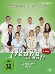 In aller Freundschaft - Die 12. Staffel, Teil 1, 24 Folgen [6 DVDs]