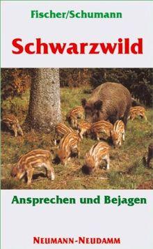 Schwarzwild: Ansprechen und Bejagen