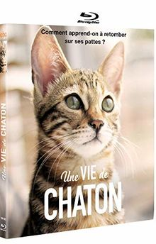 Une vie de chaton [Blu-ray] [FR Import]
