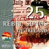 25 All the Best Rebel Songs of