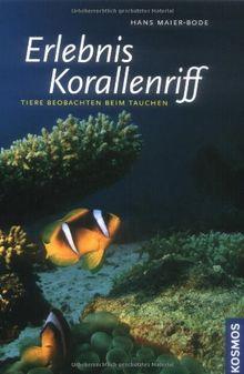 Erlebnis Korallenriff: Tiere beobachten beim Tauchen