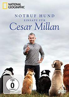 Notruf Hund - Einsatz für Cesar Millan [2 DVDs]