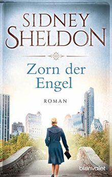 Zorn der Engel: Roman