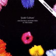 Junk Culture
