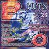 Bravo Hits 23