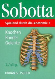 Spielend durch die Anatomie, Lernkarten, Tl.1, Knochen, Bänder, Gelenke, 148 Lernkarten