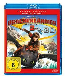 Drachenzähmen leicht gemacht 2 (+ Blu-ray 2D)