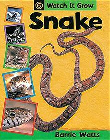 Watch It Grow: Snake