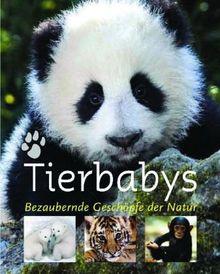 Tierbabys: Bezaubernde Geschöpfe der Natur