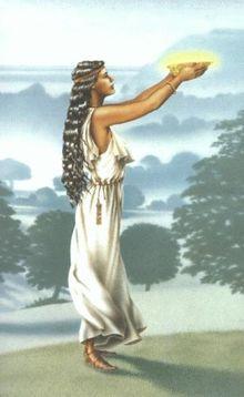 Die Avalon Trilogie. 3 Bde. (Die Wälder von Albion, Die Herrin von Avalon, Die Nebel von Avalon)