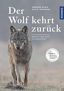 Der Wolf kehrt zurück: Mensch und Wolf in Koexistenz?