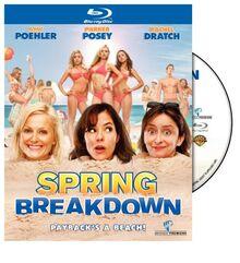 Spring Breakdown [Blu-ray]