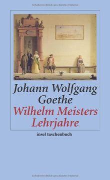 Wilhelm Meisters Lehrjahre: Ein Roman (insel taschenbuch)