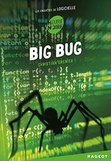 Les enquêtes de Logicielle : Big Bug