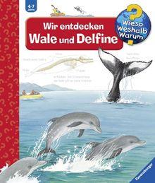 Wieso? Weshalb? Warum? 41: Wir entdecken Wale und Delfine