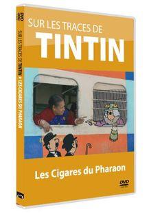 Sur les traces de tintin ; tintin et les cigares du pharaon