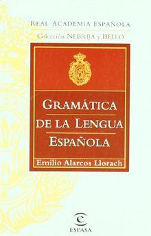GRAMATICA DE LA LENGUA ESPAÑOLA DE BOLSILLO (Gramatica Y Ortografia)