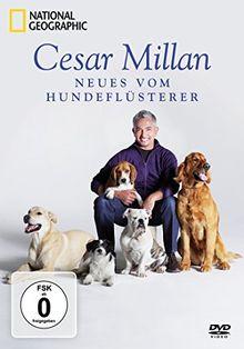 National Geographic - Cesar Millan: Neues vom Hundeflüsterer [3 DVDs]