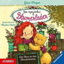 Der magische Blumenladen [4]: Die Reise zu den Wunderbeeren