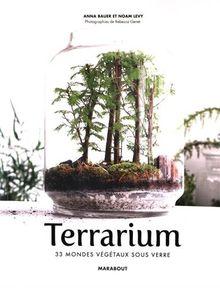 Terrariums : Les mondes végétaux sous verre