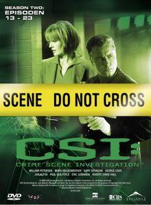 CSI: Crime Scene Investigation - Season 2.2 (3 DVDs)