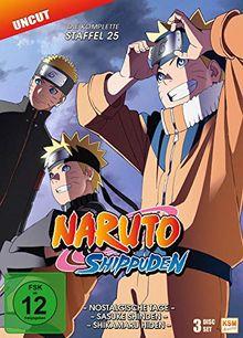 Naruto Shippuden - Staffel 25 (Folgen 700-713) [3 DVDs]