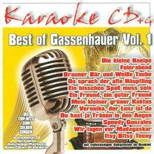 Best of Gassenhauer Vol.1 - Karaoke