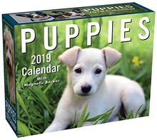 Puppies 2019 Mini Day-To-Day Calendar