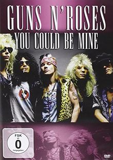 You Could Be Mine [DVD-AUDIO]