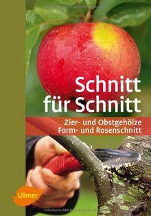 Schnitt für Schnitt: Zier- und Obstgehölze, Form- und Rosenschnitt