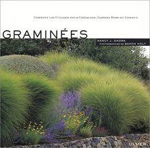 Graminées : Comment les utiliser pour créer des jardins hors du commun (Jardins Plantes)