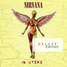 In Utero (20th Anniversary Deluxe Edition inkl. 2 CDs)