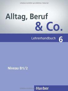 Alltag, Beruf & Co. 6: Deutsch als Fremdsprache / Lehrerhandbuch