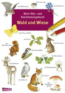 Mein Mal- und Bestimmungsbuch: Mein Mal- und Bestimmungsbuch - Wald und Wiese