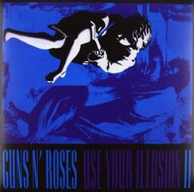 Use Your Illusion II (Back-To-Black-Serie) [Vinyl LP]