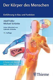 Der Körper des Menschen: Einführung in Bau und Funktion