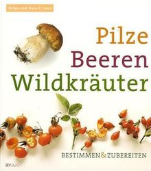 Pilze Beeren Wildkräuter: Bestimmen & Zubereiten