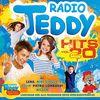 Radio Teddy Hits Vol.20