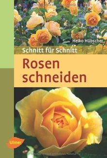 Rosen schneiden: Schnitt für Schnitt