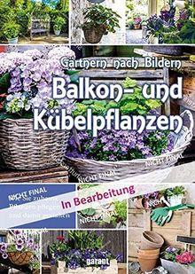 Balkon- und Kübelpflanzen