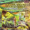 Hollins / Widor / Liddle / Wood - David Liddle at the Organ of St. Ignatius Loyola, New York