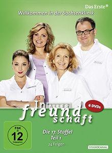 In aller Freundschaft - Die 17. Staffel, Teil 1, 24 Folgen [6 DVDs]